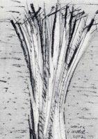 zeichnung,kavex98